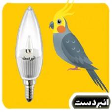 لامپ ویتامینه (ما.راء بنفش) عروس هلندی 1 وات