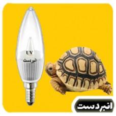 لامپ ویتامینه  لاک پشت ابی3 وات